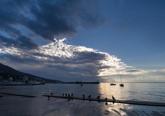 crimean coast. yalta.