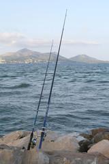 Angeln mit Geduld zum großen Fang