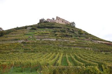 Burgruine auf dem Schlossberg