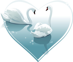 Romantic swans couple in a heart shape. Vector
