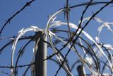 Razor Wire poster