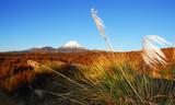 Golden volcano poster
