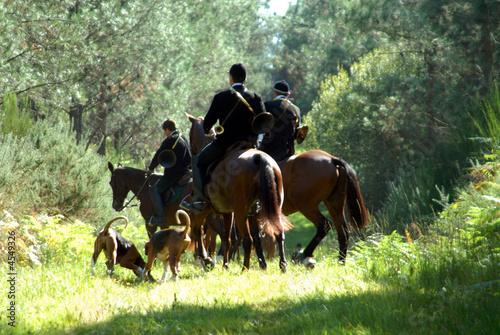 chasse à courre au chevreuil - 4549326