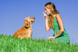 dog pet training, scolding and playing