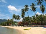 plage, cocotiers et complexes touristiques poster