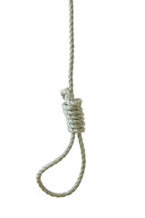 Hanging noose isolated on white background