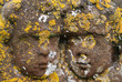 Close up of two carved cherub heads from 18th Century headstone