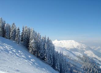 slopescape