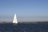 Sailboat Sailing poster