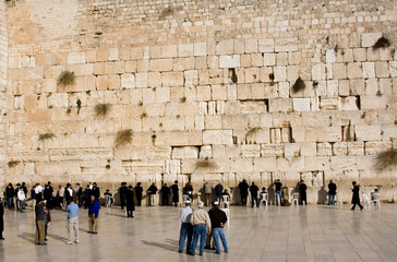 The religious orthodox Jews prays at the western wall.