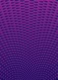 purple radiate poster