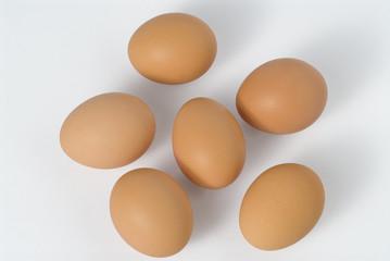 6 uova