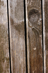 Texture of old wooden door
