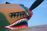 Nasul a unui avion de vanatoare Flying Tiger