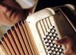 accordéon et son accordéoniste - 4631750