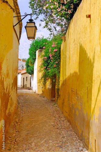 Portugal, Algarve, Silves: Typical architecture