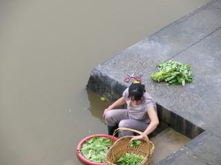 Femme lavant des légumes dans le fleuve, Chine