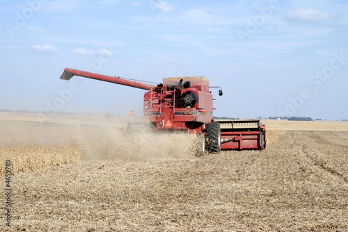 Fall Harvest:  Combining soybeans