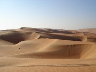 Pustynia Piaszczysta w Abu Dhabi