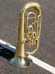 Trompete Dourado