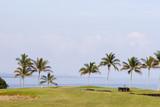 Hawaiian Golf Course Maintenance poster