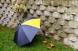 Umbrella laying in backyard  poster