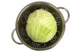Fresh cabbage in a colander with water-drops on white isolated.