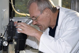 A technician at work in the laboratory poster