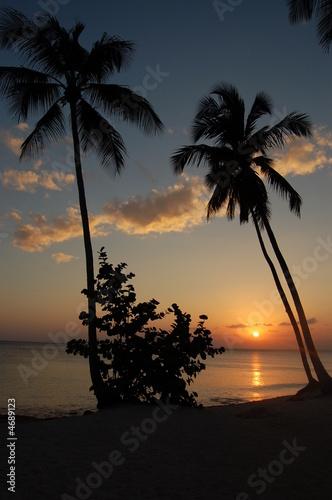 Coucher de soleil a bayahibe r publique dominicaine de paty photo libre de droits 4689123 sur - A quel heure se couche le soleil ...