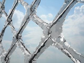 Frozen net