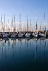 day in the marina - vertical