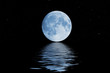 blue moon - 4710722