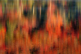 Autumn Abstract Reflections poster