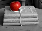 apple with schoolbooks poster