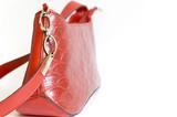 Woman handbag poster