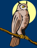 Owl perched with moon poster