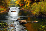 Fototapety Forest river in the fall