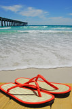 flip flop sandals on dock with pier in distance poster