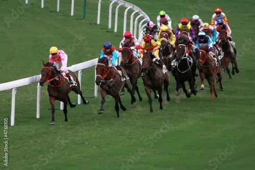 Horse Racing - 4768105