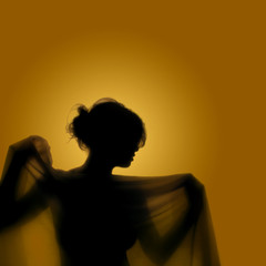 Girl with veil - silhouette of a woman