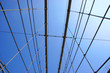Bridge Cables Crossing In Front of Blue Sky