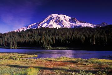 Windy Mt. Rainier