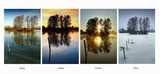 Collection four season - Spring, Summer, Autumn, Winter  poster
