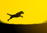 Animals Silhouette - Jumping Dog