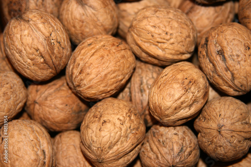 Walnuts in the market