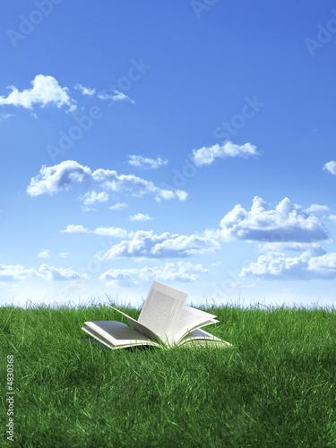 książka na trawniku