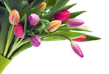 Bouquet of tulips - 4841923