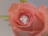 diamond inside rose