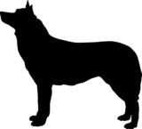 Animali silhouette - cani - Pastore Tedesco poster