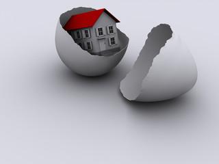 House egg